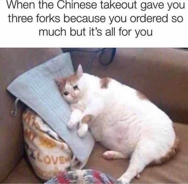 Cat - When the Chinese takeout gave you three forks because you ordered so much but it's all for you LOVE