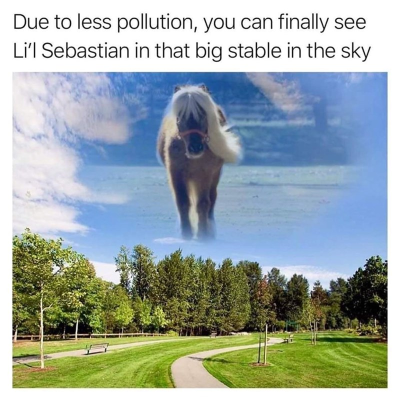 Cloud - Due to less pollution, you can finally see Li'l Sebastian in that big stable in the sky