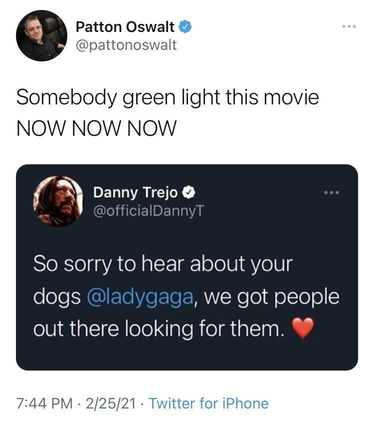 Organism - Patton Oswalt ... @pattonoswalt Somebody green light this movie NOW NOW NOW Danny Trejo O @officialDannyT So sorry to hear about your dogs @ladygaga, we got people out there looking for them. 7:44 PM · 2/25/21 · Twitter for iPhone