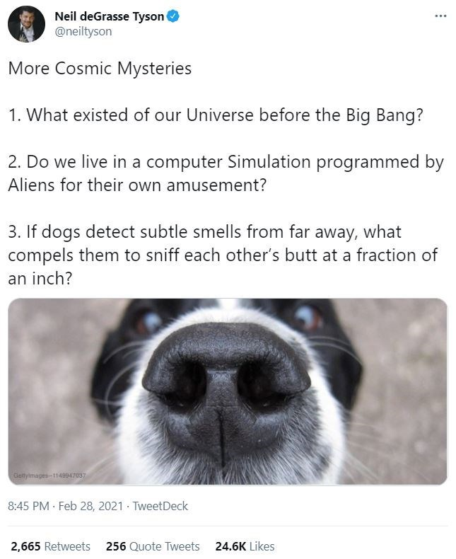 Dog - Neil deGrasse Tyson @neiltyson More Cosmic Mysteries 1. What existed of our Universe before the Big Bang? 2. Do we live in a computer Simulation programmed by Aliens for their own amusement? 3. If dogs detect subtle smells from far away, what compels them to sniff each other's butt at a fraction of an inch? Getyimages-1149947037 8:45 PM Feb 28, 2021 · TweetDeck 2,665 Retweets 256 Quote Tweets 24.6K Likes