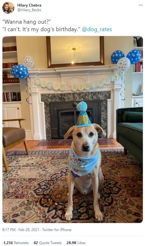 """Table - Hilary Chebra @Hilary_Becks ... """"Wanna hang out?"""" """"I can't. It's my dog's birthday."""" @dog_rates CODA 6:17 PM · Feb 28, 2021 . Twitter for iPhone 1,236 Retweets 82 Quote Tweets 28.9K Likes"""
