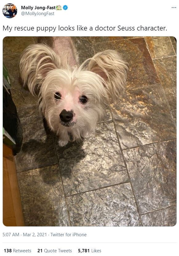Dog - Molly Jong-Fast @MollyJongFast ... My rescue puppy looks like a doctor Seuss character. 5:07 AM Mar 2, 2021 Twitter for iPhone 138 Retweets 21 Quote Tweets 5,781 Likes