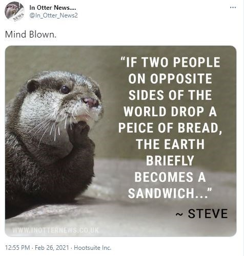"Carnivore - In Otter News.. @In_Otter_News2 ... NEWS Mind Blown. ""IF TWO PEOPLE ON OPPOSITE SIDES OF THE WORLD DROPA PEICE OF BREAD, THE EARTH BRIEFLY BECOMES A SANDWICH..."" STEVE 2. Www.INOTTERNEWS.CO.UK 12:55 PM - Feb 26, 2021. Hootsuite Inc."