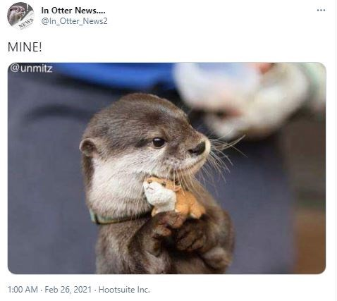 Organism - In Otter News.. @In_Otter_News2 NEWS MINE! @unmitz 1:00 AM - Feb 26, 2021 - Hootsuite Inc.