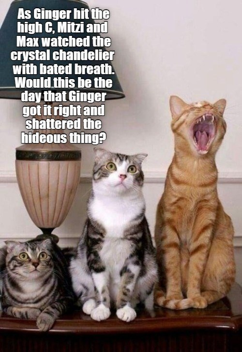 As Ginger hit the high C, Mitzi aid Max watched the crystal chandelier with bated breath. Would this be the day that Ginger got it right and shattered the hideous thing? | two cats crouching next to a third screaming cat