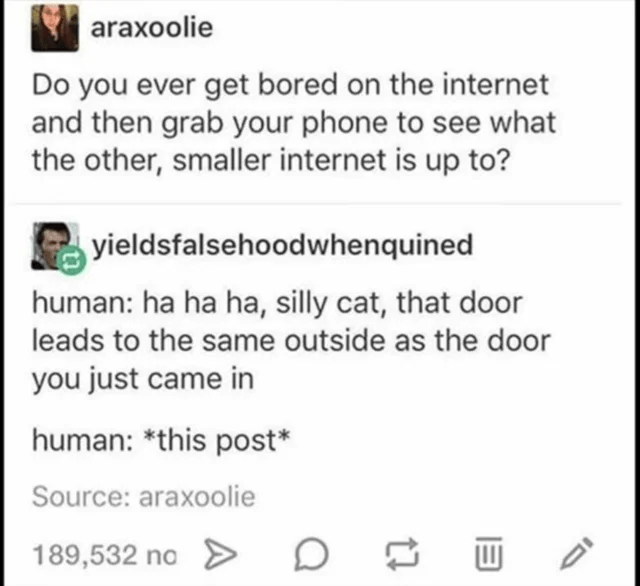 Font - araxoolie Do you ever get bored on the internet and then grab your phone to see what the other, smaller internet is up to? yieldsfalsehoodwhenquined human: ha ha ha, silly cat, that door leads to the same outside as the door you just came in human: *this post* Source: araxoolie 189,532 no > D