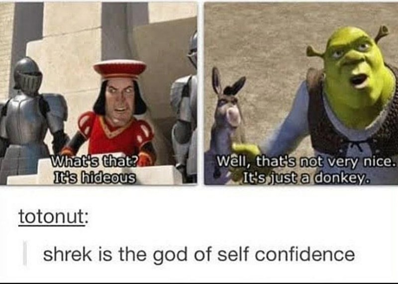 Product - What's that? It's hideous wêll, that's not very nice. It's just a donkey. totonut: shrek is the god of self confidence