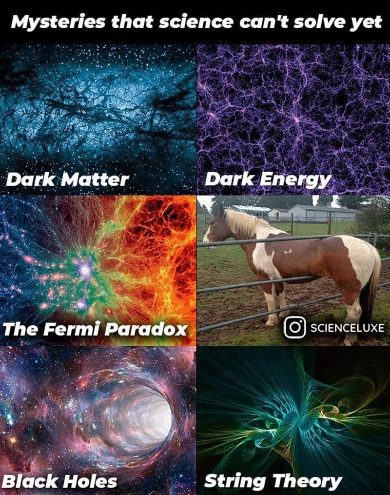 Horse - Mysteries that science can't solve yet Dark Matter Dark Energy The Fermi Paradox SCIENCELUXE Black Holes String Theory