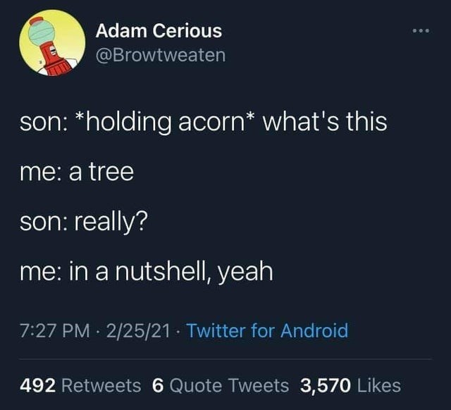 Font - Adam Cerious @Browtweaten son: *holding acorn* what's this me: a tree son: really? me: in a nutshell, yeah 7:27 PM · 2/25/21 · Twitter for Android 492 Retweets 6 Quote Tweets 3,570 Likes