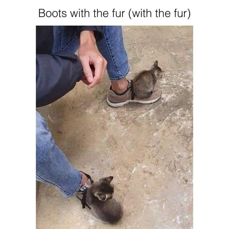 Footwear - Boots with the fur (with the fur)