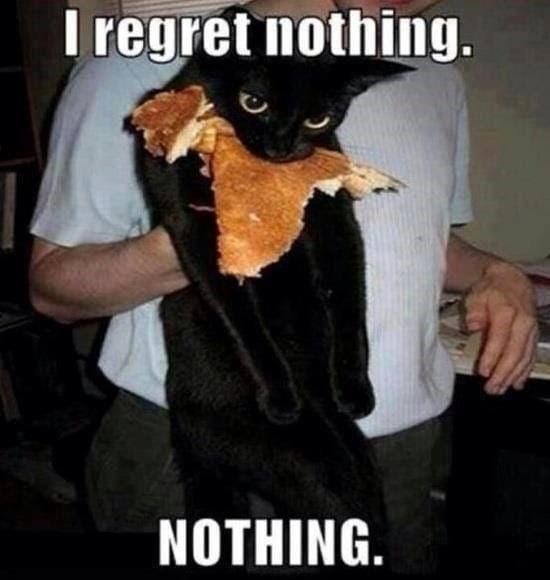 Sleeve - I regret nothing. NOTHING.