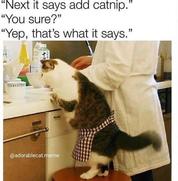 "Cat - ""Next it says add catnip.' ""You sure?"" ""Yep, that's what it says."" @adorablecat.meme"