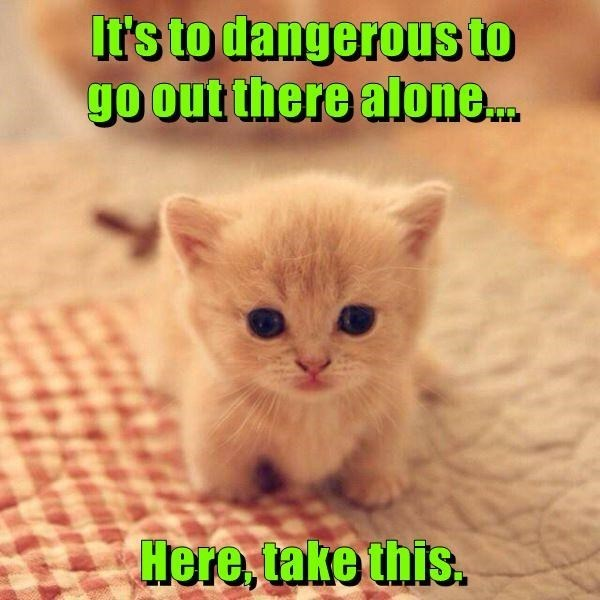 Cat - It's to dangerous LD go out there alone. Here, take this.