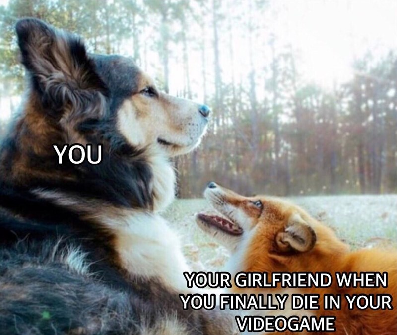 Dog - YOU YOUR GIRLFRIEND WHEN YOU FINALLY DIE IN YOUR VIDEOGAME