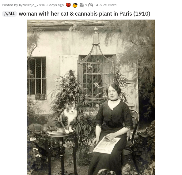 Plant - Posted by u/zidiraja_7890 2 days ago 14 & 25 More Ir/ALL woman with her cat & cannabis plant in Paris (1910)