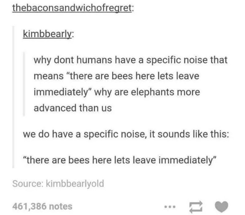 """Font - thebaconsandwichofregret: kimbbearly: why dont humans have a specific noise that means """"there are bees here lets leave immediately"""" why are elephants more advanced than us we do have a specific noise, it sounds like this: """"there are bees here lets leave immediately"""" Source: kimbbearlyold 461,386 notes ..."""