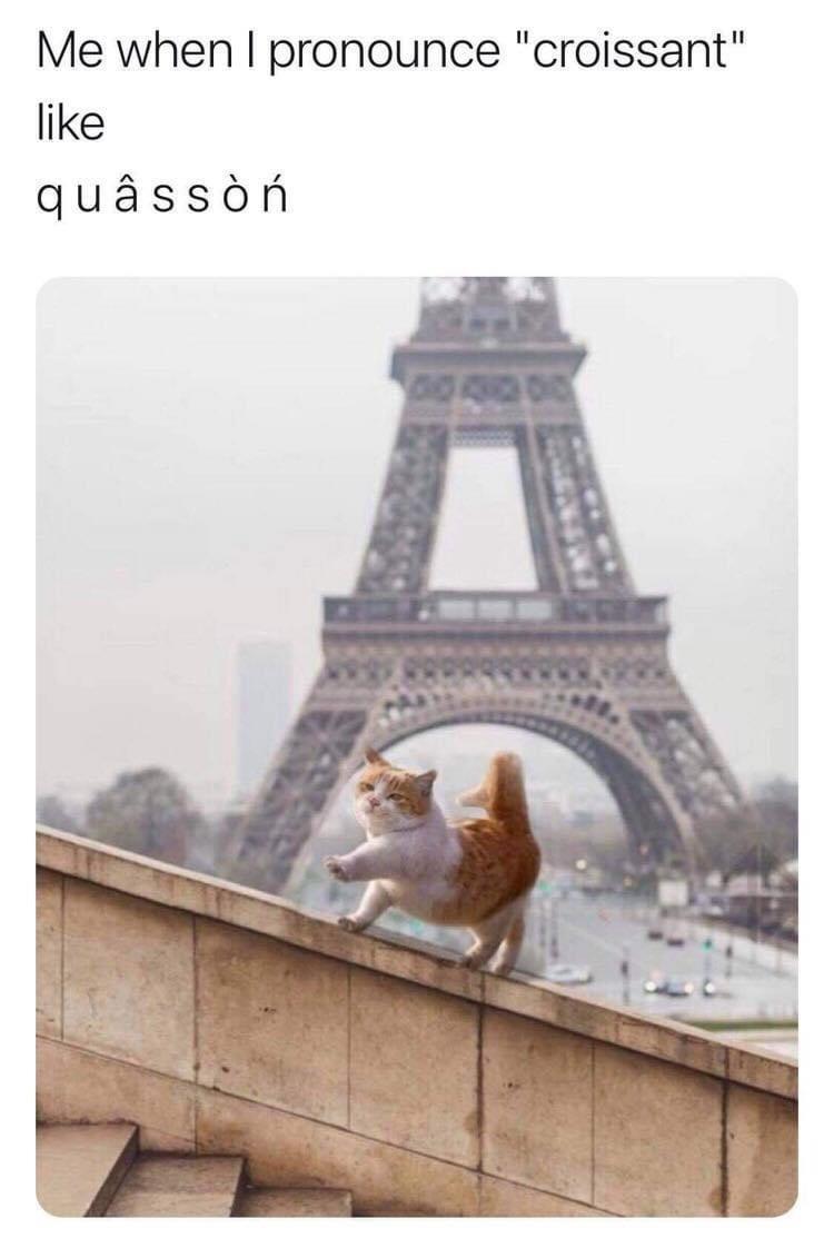 """Photograph - Me when I pronounce """"croissant"""" like quâssòń DIO"""