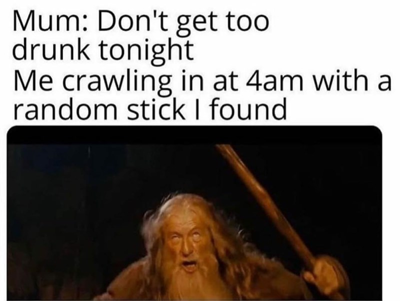 Organism - Mum: Don't get too drunk tonight Me crawling in at 4am with a random stick I found