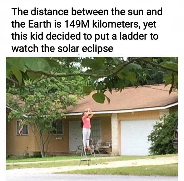 Plant - The distance between the sun and the Earth is 149M kilometers, yet this kid decided to put a ladder to watch the solar eclipse