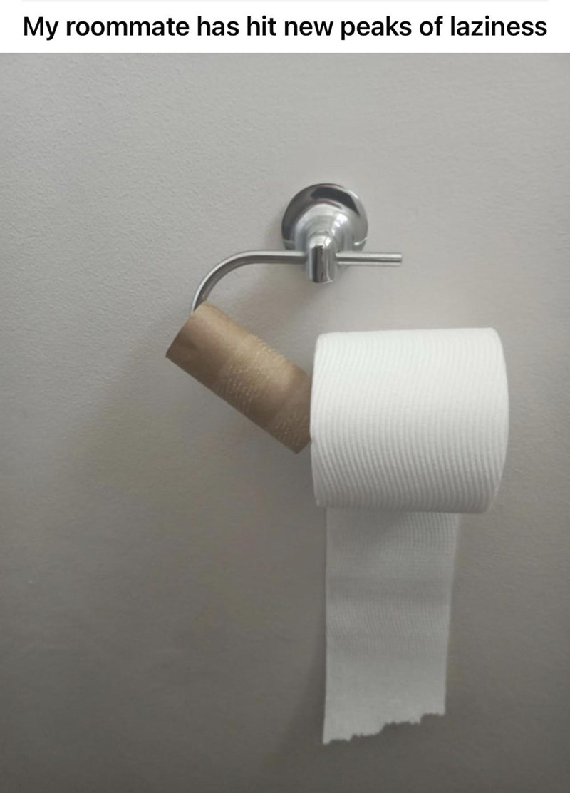 Toilet roll holder - My roommate has hit new peaks of laziness