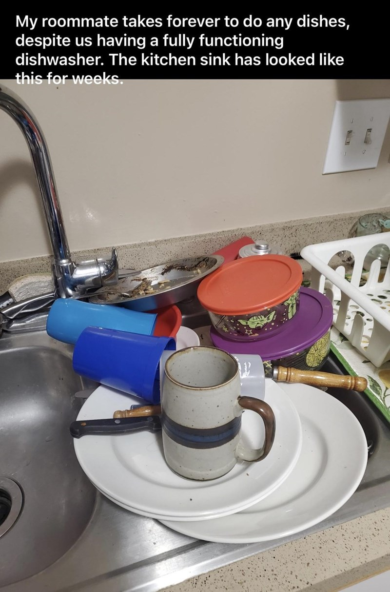 Tableware - My roommate takes forever to do any dishes, despite us having a fully functioning dishwasher. The kitchen sink has looked like this for weeks.