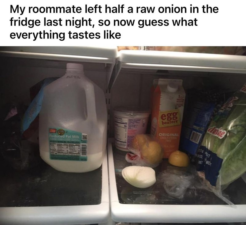 Liquid - My roommate left half a raw onion in the fridge last night, so now guess what everything tastes like SZA egg beaters ORIGINAL CHOLESTEROS 7REE Reduced Fat Milk NT