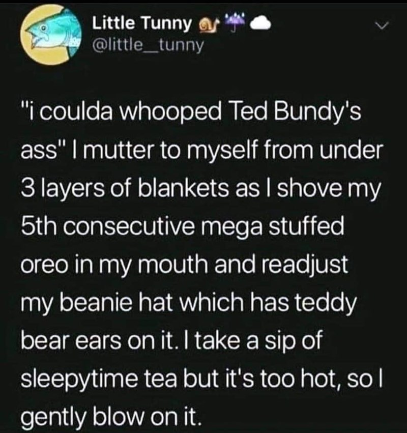 """Font - Little Tunny s @little_tunny L. """"i coulda whooped Ted Bundy's ass"""" I mutter to myself from under 3 layers of blankets as I shove my 5th consecutive mega stuffed oreo in my mouth and readjust my beanie hat which has teddy bear ears on it. I take a sip of sleepytime tea but it's too hot, so l gently blow on it."""