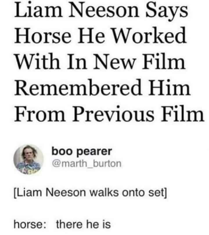 Font - Liam Neeson Says Horse He Worked With In New Film Remembered Him From Previous Film boo pearer @marth_burton [Liam Neeson walks onto set] horse: there he is