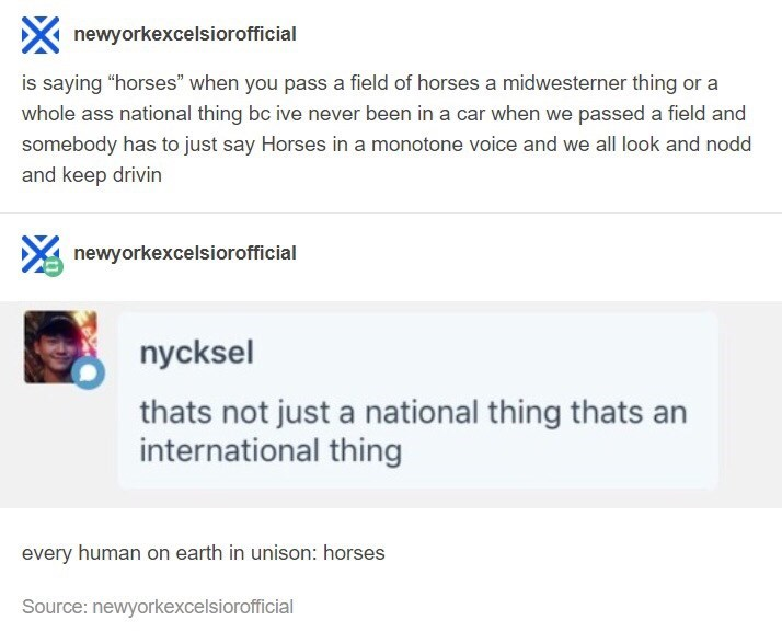 """Product - newyorkexcelsiorofficial is saying """"horses"""" when you pass a field of horses a midwesterner thing or a whole ass national thing bc ive never been in a car when we passed a field and somebody has to just say Horses in a monotone voice and we all look and nodd and keep drivin newyorkexcelsiorofficial nycksel thats not just a national thing thats an international thing every human on earth in unison: horses Source: newyorkexcelsiorofficial"""