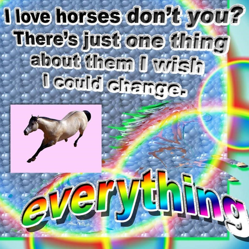 Rainbow - I love horses don't you? There's just one thing about them I wislh I Could change. everfuin