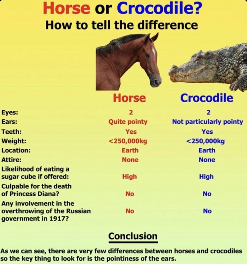 Horse - Horse or Crocodile? How to tell the difference Horse Crocodile Eyes: 2 2 Ears: Quite pointy Not particularly pointy Teeth: Yes Yes Weight: <250,000kg <250,000kg Location: Earth Earth Attire: None None Likelihood of eating a sugar cube if offered: High High Culpable for the death of Princess Diana? No No Any involvement in the overthrowing of the Russian government in 1917? No No Conclusion As we can see, there are very few differences between horses and crocodiles so the key thing to loo