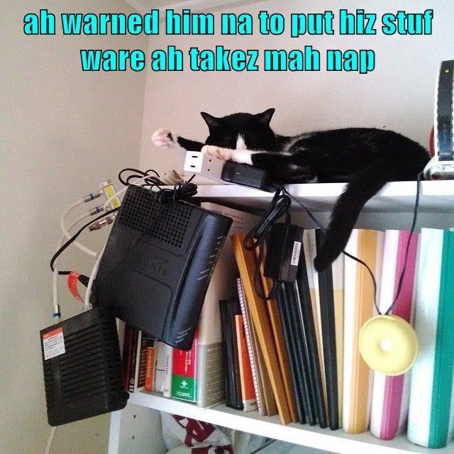 i warned him not to put his stuff where i take my nap | cat sleeping on the top shelf next to electronic devices hanging by their wires