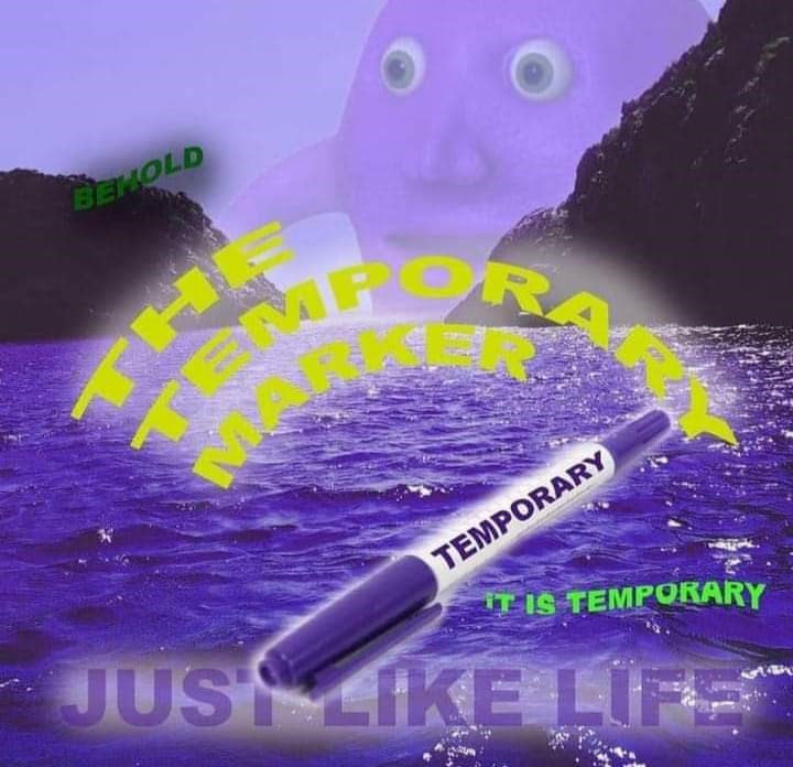 Purple - BEHOLD ORA TEMPORARY IT IS TEMPORARY JUS IKE LIFE