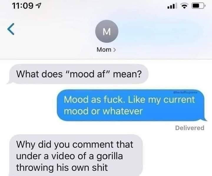 """Font - 11:09 7 M Mom > What does """"mood af"""" mean? Sharkuffupreme Mood as fuck. Like my current mood or whatever Delivered Why did you comment that under a video of a gorilla throwing his own shit"""