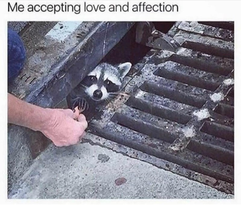 Photograph - Me accepting love and affection