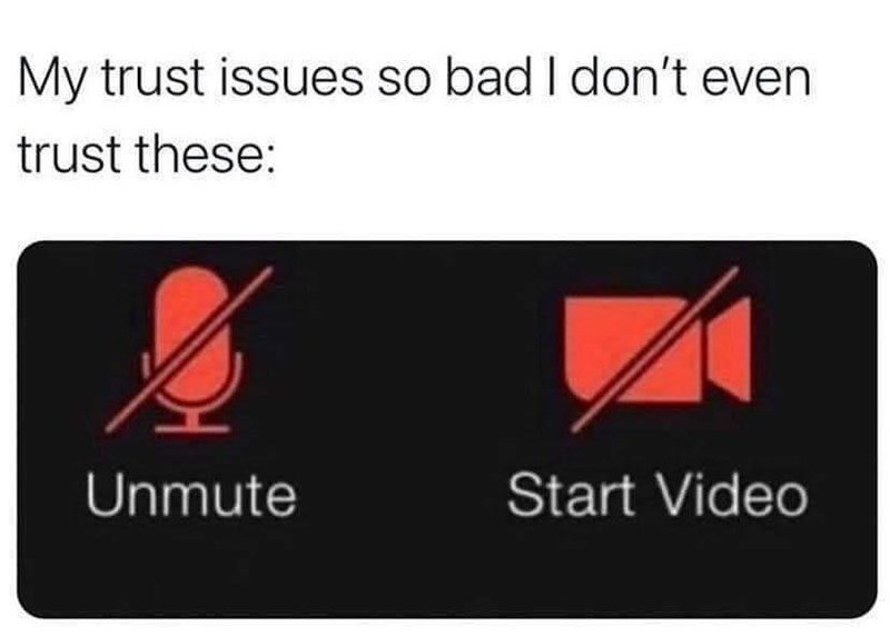 Product - My trust issues so bad I don't even trust these: Unmute Start Video