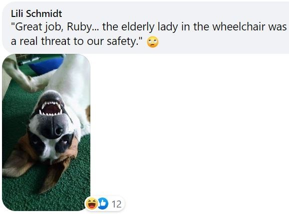 "Carnivore - Lili Schmidt ""Great job, Ruby.. the elderly lady in the wheelchair was a real threat to our safety."" 12"