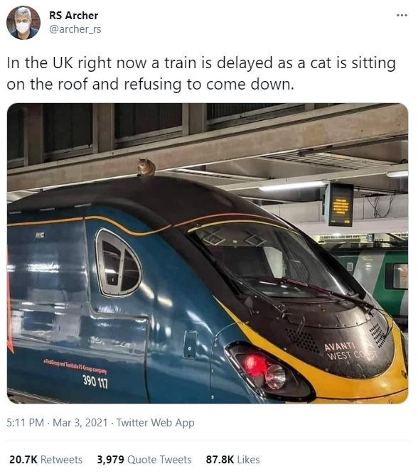 Train - RS Archer @archer_rs In the UK right now a train is delayed as a cat is sitting on the roof and refusing to come down. AVANTI WEST COST 390 117 5:11 PM · Mar 3, 2021 - Twitter Web App 20.7K Retweets 3,979 Quote Tweets 87.8K Likes