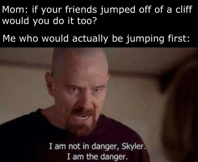 Forehead - Mom: if your friends jumped off of a cliff would you do it too? Me who would actually be jumping first: I am not in danger, Skyler. I am the danger.