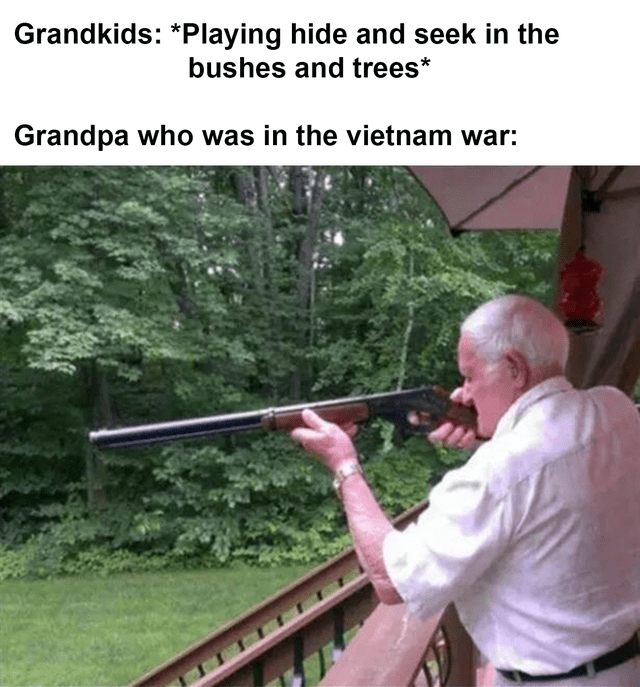 Plant - Grandkids: *Playing hide and seek in the bushes and trees* Grandpa who was in the vietnam war:
