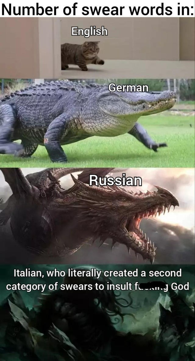 Vertebrate - Number of swear words in: English German Russian Italian, who literally created a second category of swears to insult fl.-..g God