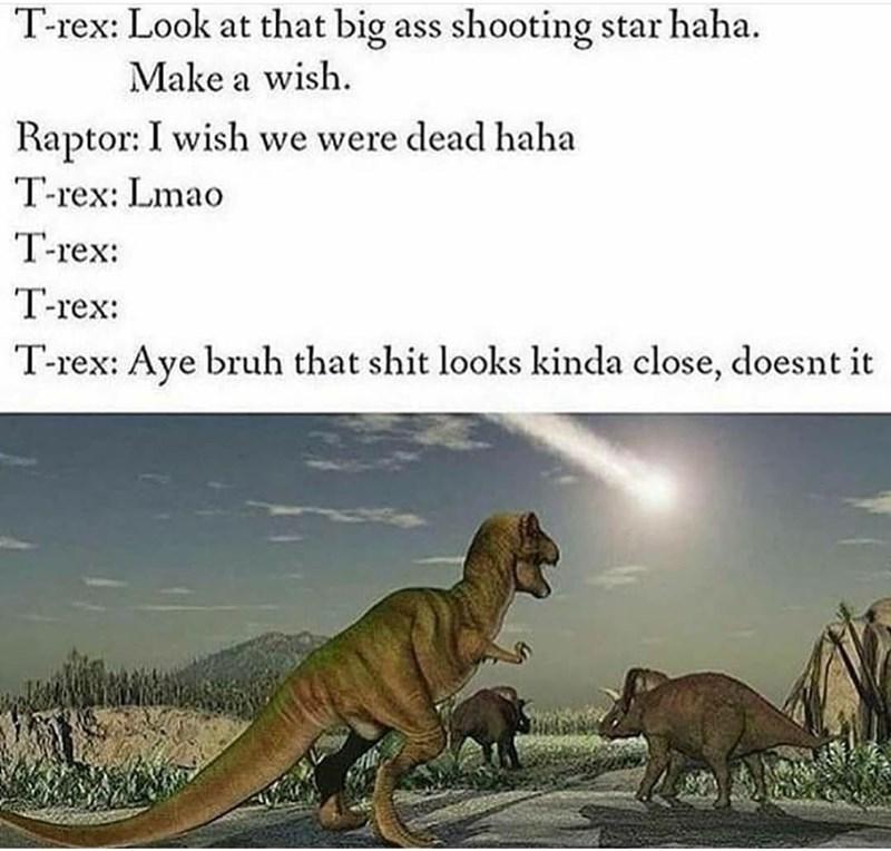 Vertebrate - T-rex: Look at that big ass shooting star haha. Make a wish. Raptor: I wish we were dead haha T-rex: Lmao T-rex: T-rex: T-rex: Aye bruh that shit looks kinda close, doesnt it