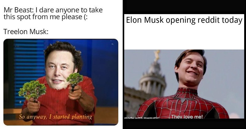 Funny dank memes about Elon Musk donating $1 million to help plant trees