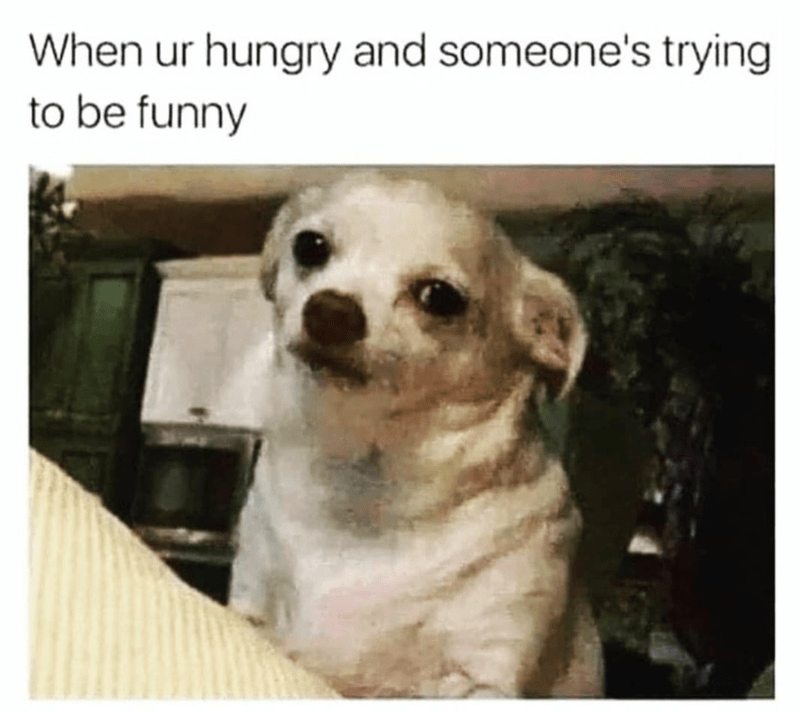 funny memes, memes, hangry   When ur hungry and someone's trying to be funny