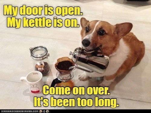 MY door is open. MY kettle is on. Come on over,. It's been too long | pic of a cute dog pouring coffee from a kettle into mugs