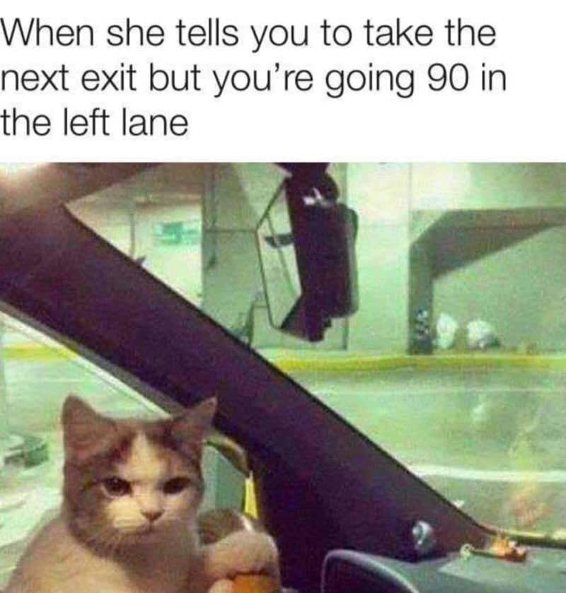 funny memes, memes, cat memes | When she tells you to take the next exit but you're going 90 in the left lane