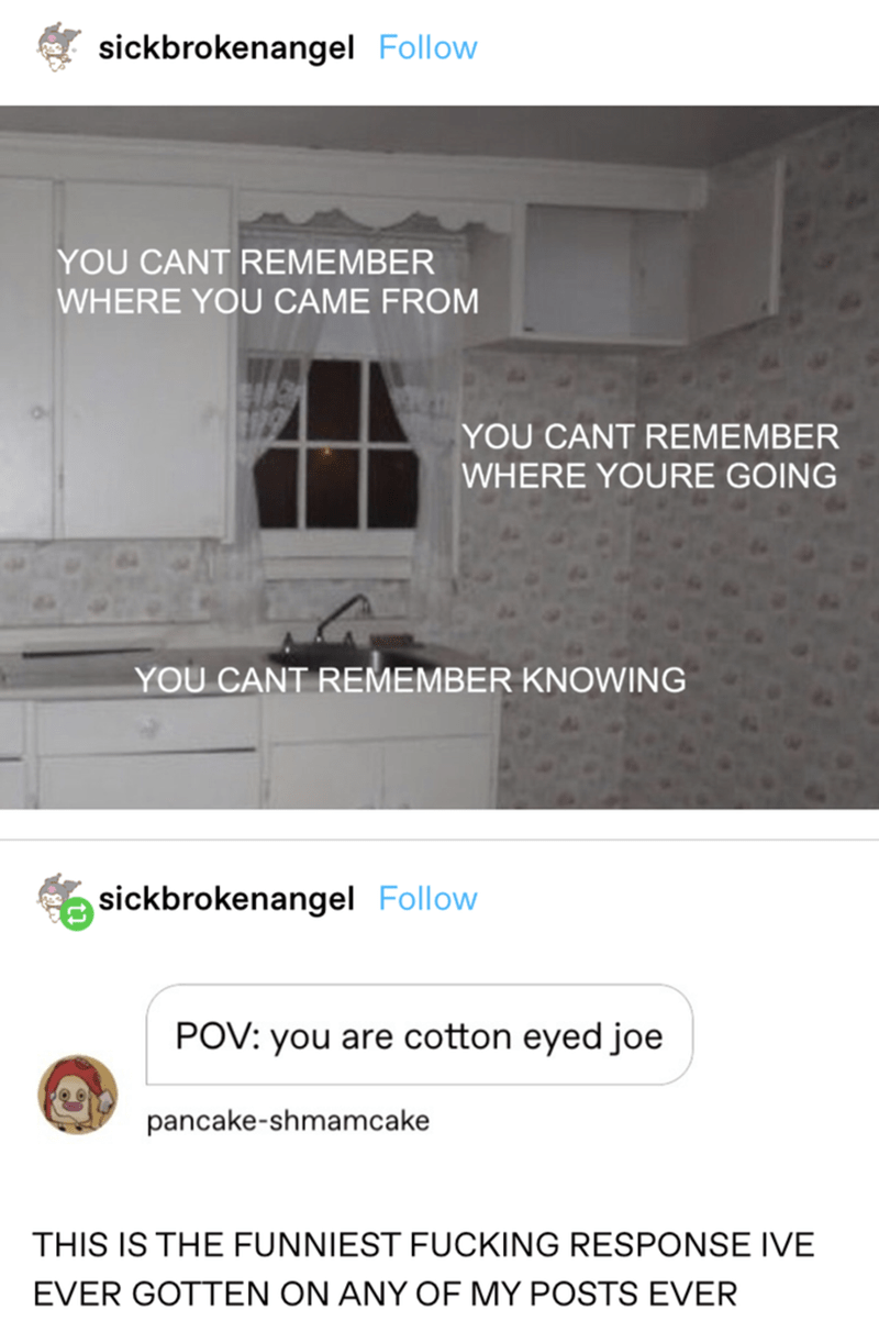 Product - sickbrokenangel Follow YOU CANT REMEMBER WHERE YOU CAME FROM YOU CANT REMEMBER WHERE YOURE GOING YOU CANT REMEMBER KNOWING sickbrokenangel Follow POV: you are cotton eyed joe pancake-shmamcake THIS IS THE FUNNIEST FUCKING RESPONSE IVE EVER GOTTEN ON ANY OF MY POSTS EVER