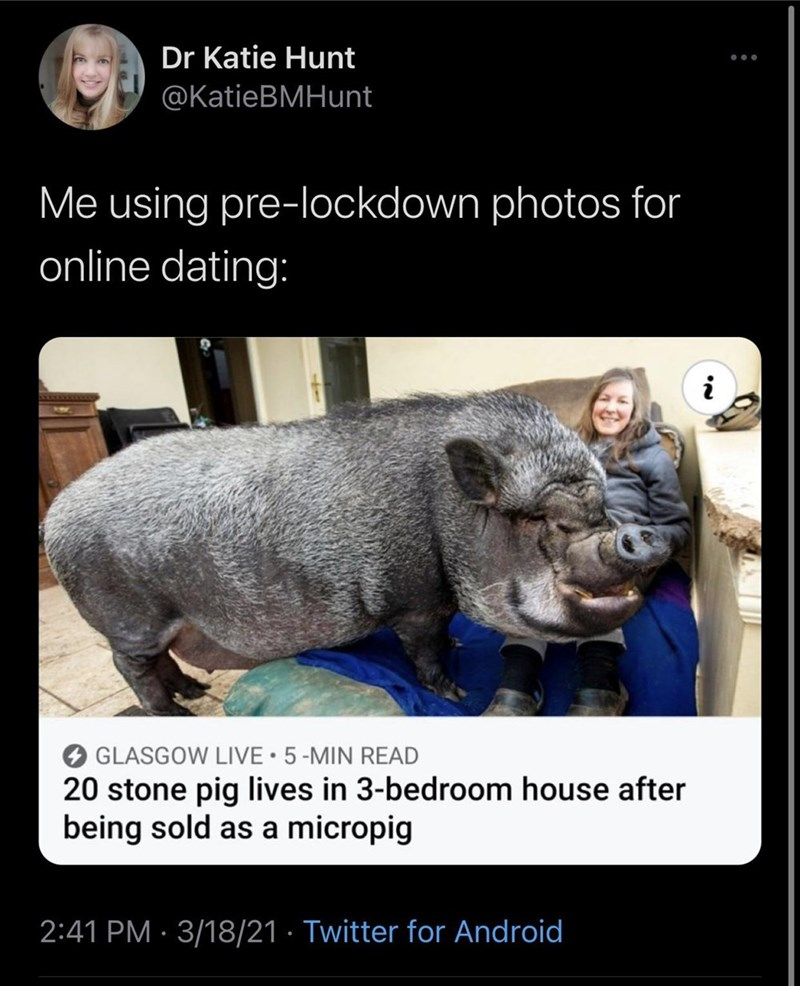 Organism - Dr Katie Hunt @KatieBMHunt Me using pre-lockdown photos for online dating: i GLASGOW LIVE•5-MIN READ 20 stone pig lives in 3-bedroom house after being sold as a micropig 2:41 PM · 3/18/21 · Twitter for Android