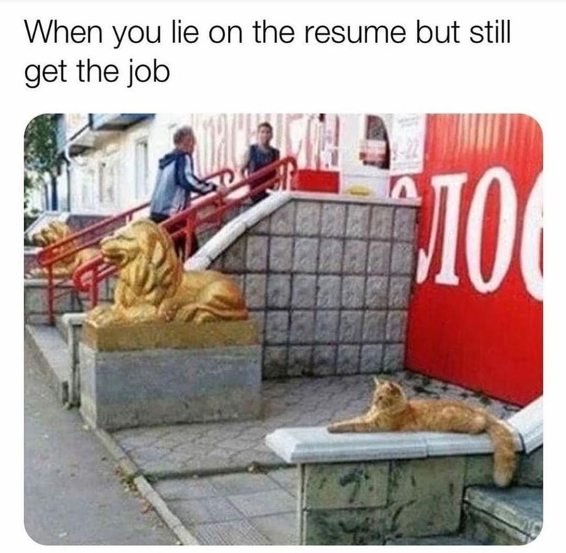 Rectangle - When you lie on the resume but still get the job