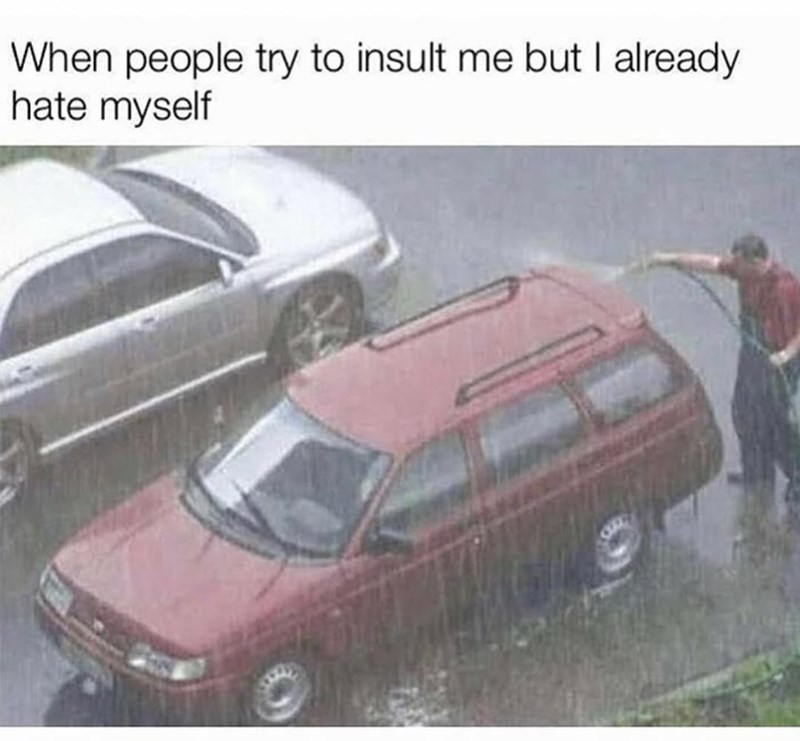 Car - When people try to insult me but I already hate myself